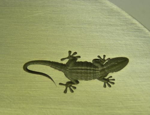 3D Gravur Alu Gecko